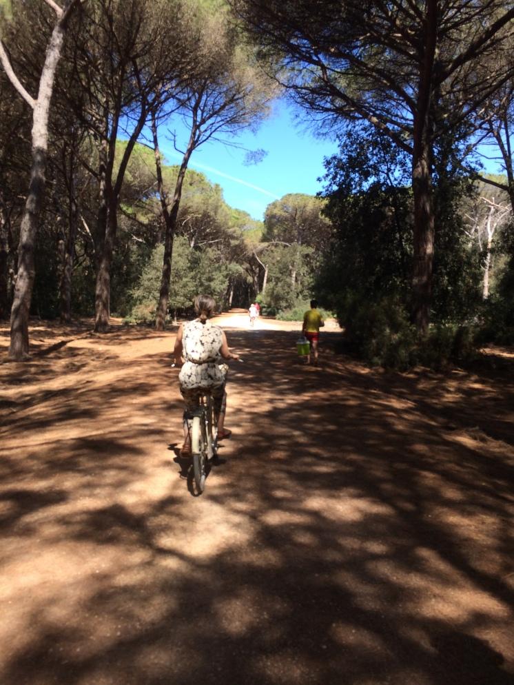 pedalando verso sud